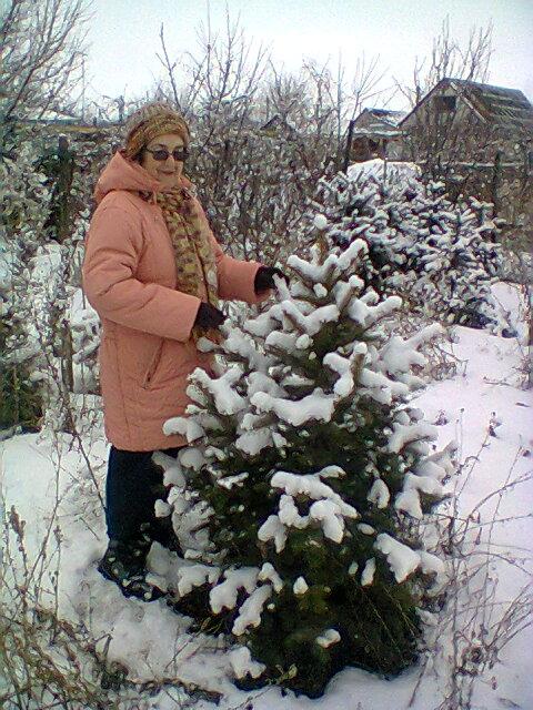 Наталья Петровна Ган в саду возле елочки, привезенной в 2006 г. из Киргизии с опытного  хозяйства, организованного ее отцом. Этой елочке было тогда 5 лет и была она всего 15 см